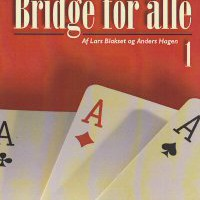 Bridge for alle 1