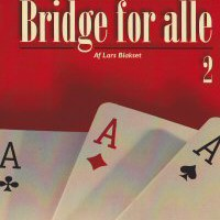 Bridge for alle 2