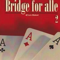 Bridge for alle 2